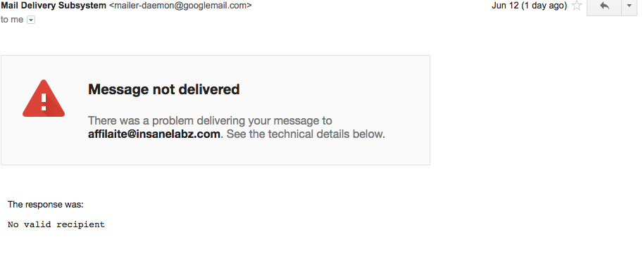 Insane Labz Email 2